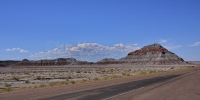 1104-PetrifiedForest