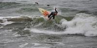 2503-Surfer